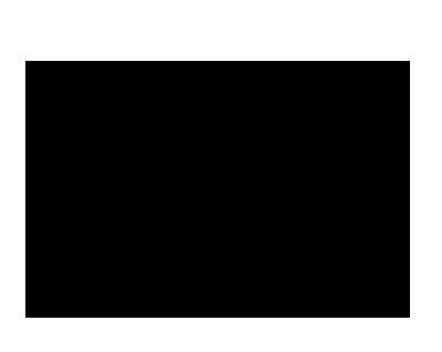 SCI Gestión